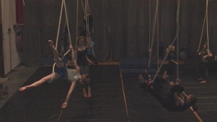 Canopy Trapeze Studio