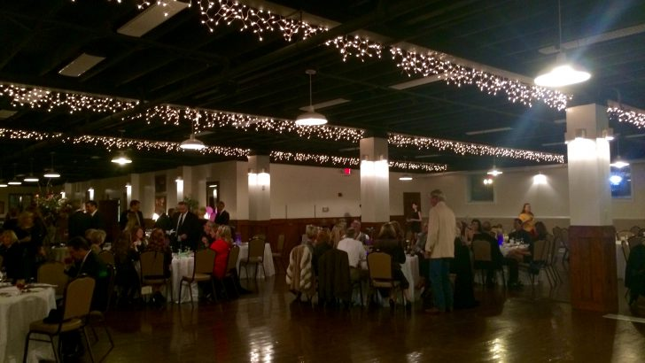15th Annual Peace Place Ball to raise awareness for domestic violence
