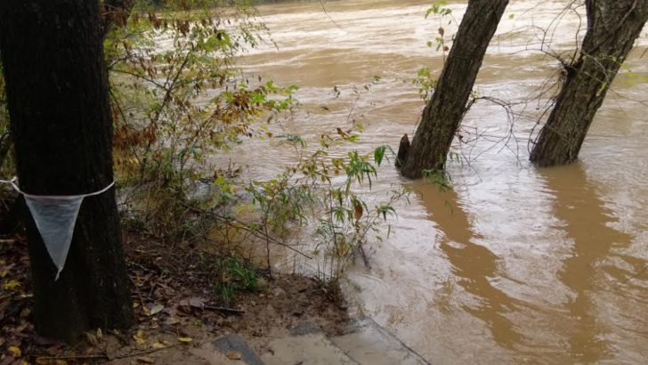 Grady Explains: Flood Warnings