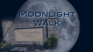 E1_Lunar Hike_OTS.001