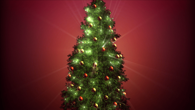 Athens Christmas Tree Donated