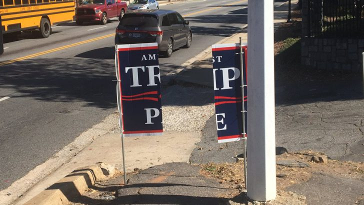 Campaign Signs Vandalized in Athens