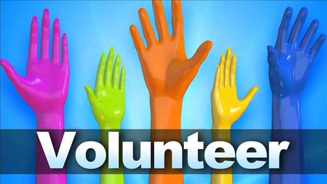 Where Should You Volunteer Based on Your Personality? Take this Quiz and See Your Results