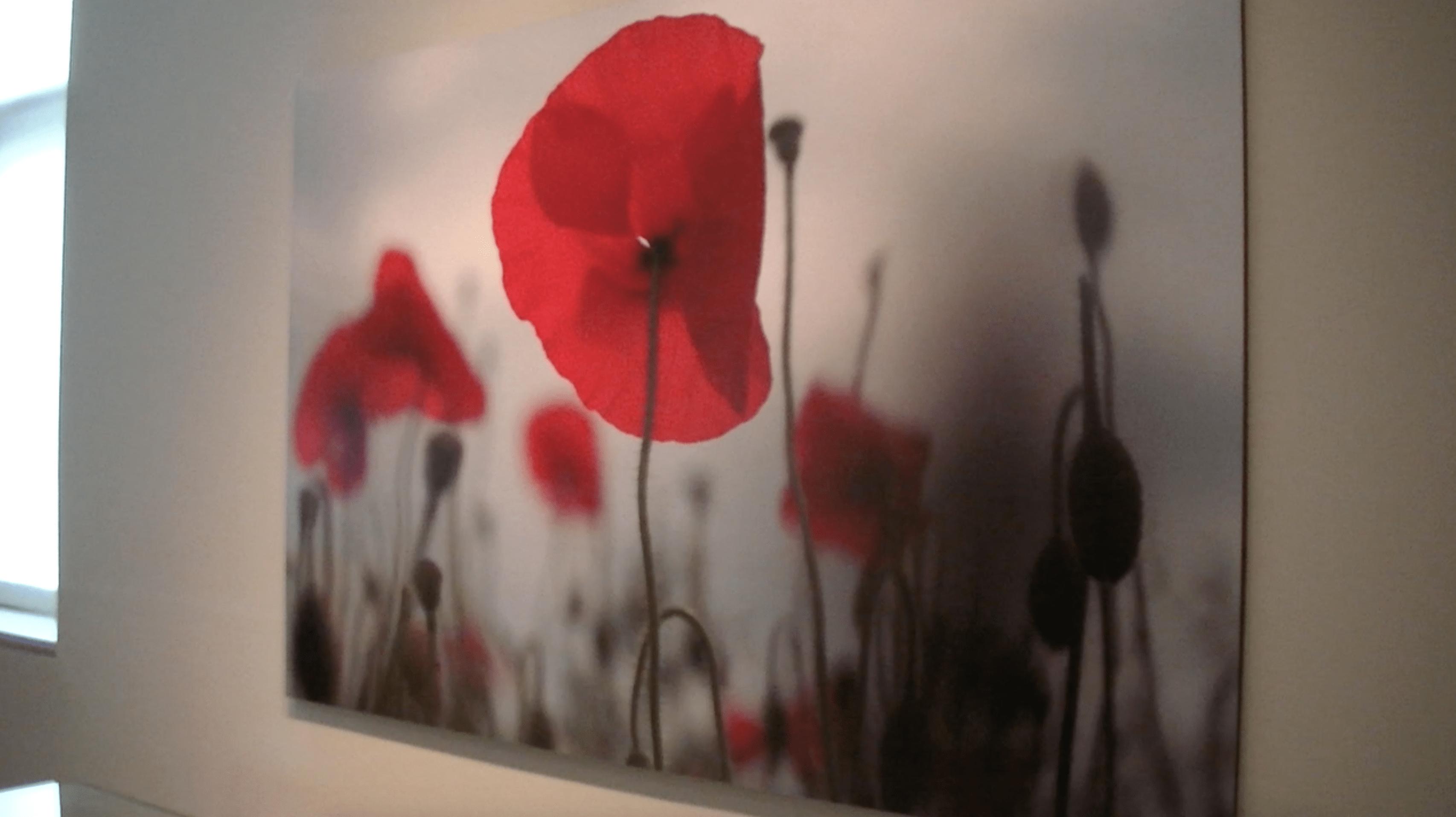 New Exhibit Highlights Women in World War One