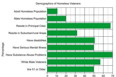 National Demographics for Homeless Veterans